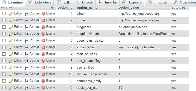 tabla de wp-options junglacode